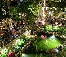 Mộc Miên Café - Không gian lãng mạn giữa lòng thành phố
