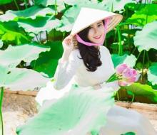 Mê mẩn cánh đồng  sen mới xuất hiện tại Đà Nẵng – Quảng Nam