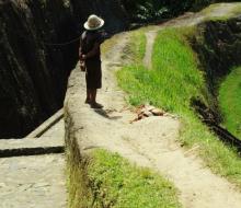 Phượt thủ Nguyễn Trúc Lâm: