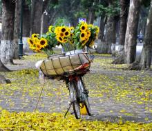 Tháng 9 - Các đặc sản mùa thu gõ cửa Hà Nội