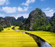Rong ruổi các cánh đồng lúa vàng ươm đẹp nhất Việt Nam vào độ thu sang