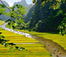 """Check in ngay các bối cảnh quay """"Kong: Skull Island"""" siêu đẹp tại Việt Nam"""
