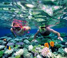 10 trải nghiệm nhất định phải thử khi lần đầu đến du lịch Côn Đảo