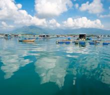 Hòn Lớn (Khánh Hòa) – bãi biển hot nhất mùa hè này