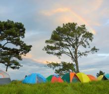 Trekking Tà Lang – Phan Dũng (Bình Thuận) hai mùa cỏ đẹp nhất nhì Việt Nam