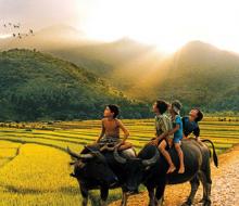 Có gì ở Phú Yên mà ai cũng muốn xin một vé về tuổi thơ?