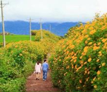 Tháng 10, du lịch Việt Nam ở đâu đẹp và lý tưởng nhất?