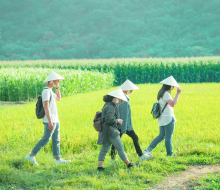 Một vé về tuổi thơ nơi đồng xanh với vườn quốc gia Nam Cát Tiên, Đồng Nai